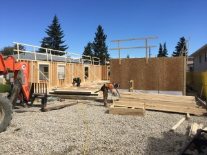 main-floor-framing-wall-1