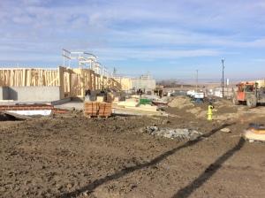 site-progress-framing-east-elevation